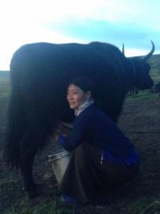 Chong Kyid and yak